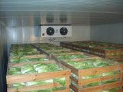 Мини-завод засолки овощей - ким чи